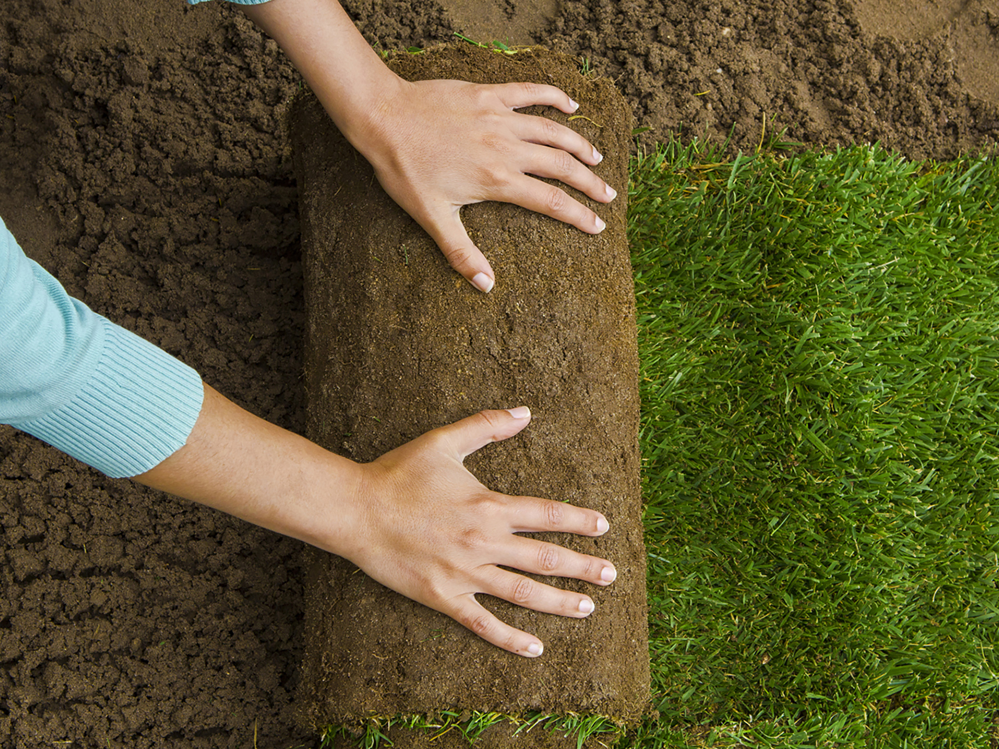 how to lay sod add sand to soil